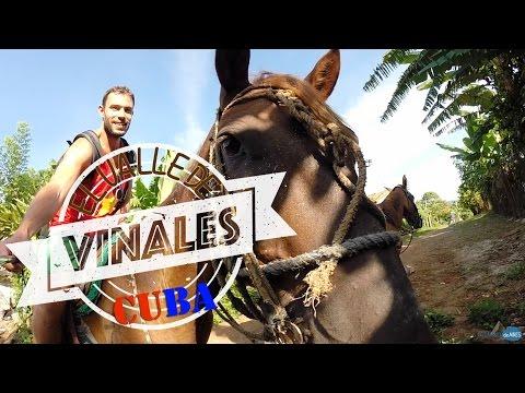 Excursión a caballo por el Valle de Viñales