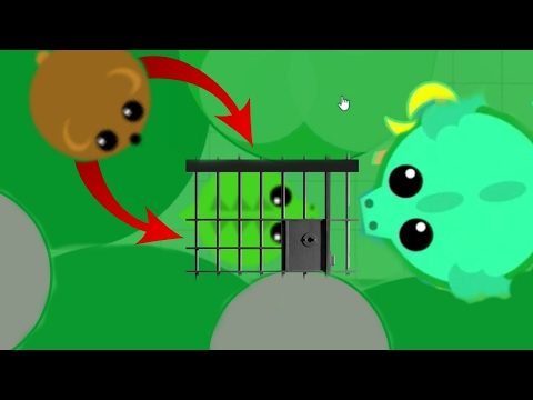 TRAPPING PETS IN MOPEIO TROLLING STUCK ANIMALS  MEGA NEW TROLL TRICK w DRAGON Mopeio Gameplay