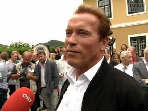 """Schwarzenegger- Interview: """"War echt abnormal"""""""