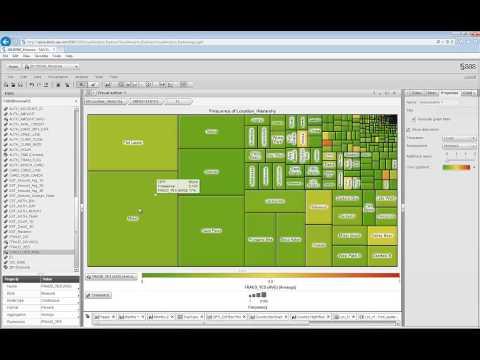 SAS Visual Analytics Use Case for Fraud