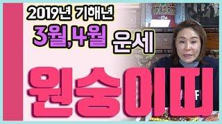 [서울점집][신점잘보는곳]2019년 기해년 3월,4월 운세_원숭이띠