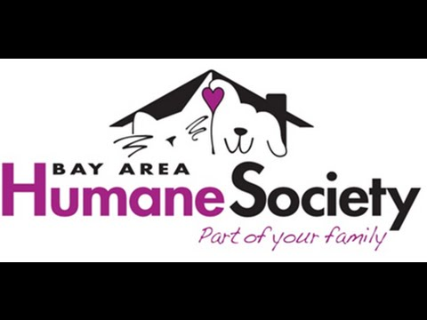 Read Relax Program Bay Area Humane Society Youtube