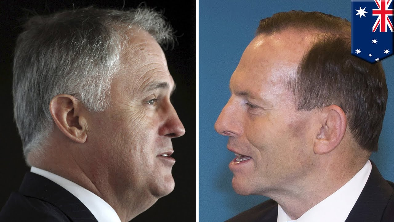Surreal animation explains Tony Abbott's downfall – video