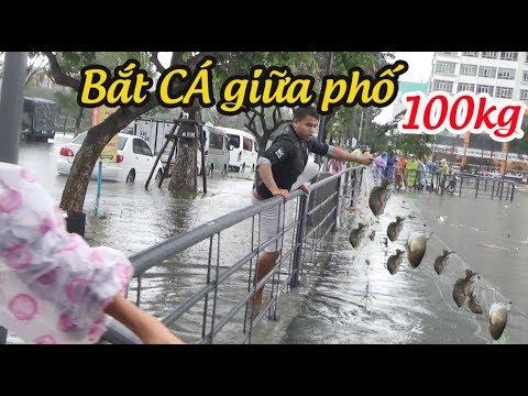 Đường phố BIẾN thành SÔNG - Người dân Đà  Nẵng giăng lưới bắt hơn 100 kg cá