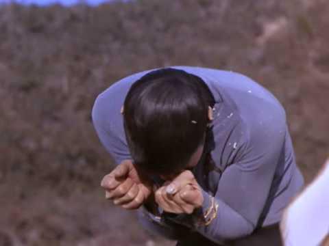 Star Trek  A Kiss For Spock