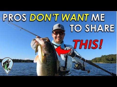 This Retrieve Has Been A Pro Secret For 5 Years! | Deep Water Neko Rig