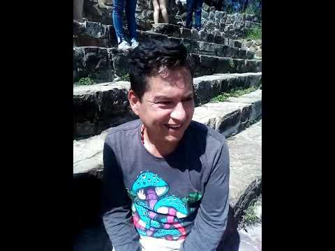 Ayahuasca DMT sapo xanga NN 5 Meo sanación Yopo rape