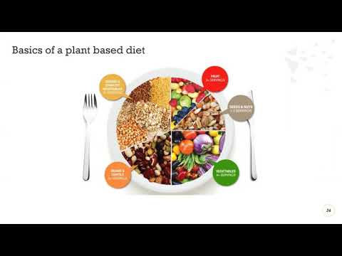 Nutrition is Medicine - Part II