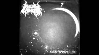 KILLING ADDICTION 01   Necrosphere