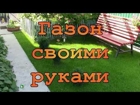 Как сделать газон на даче своими руками пошаговая инструкция