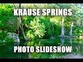 Krause Springs - Photo Slideshow