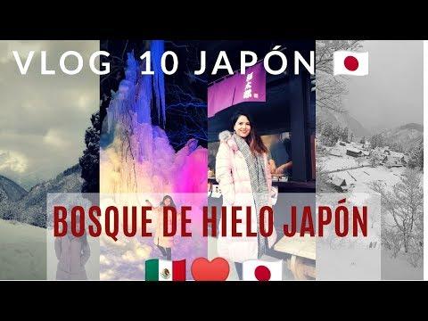 BOSQUE DE HIELO EN JAPON