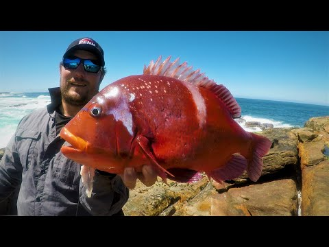 Catching Tomatoes From The Rocks - How To Catch Deep-Sea Fish From The Shore