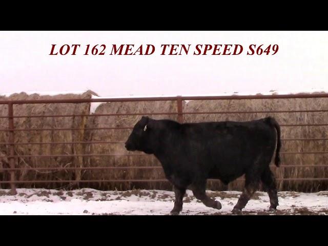 Mead Farms Lot 162