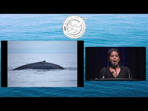 SMM2017 Monday Plenary Sessions