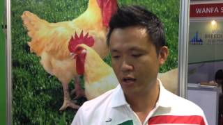 Evolution of the Taiwanese poultry market - Viv Asia 2015