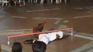 Best Limbo Dancer (Bahamas)
