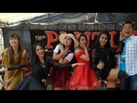 PANTURA Live SEMARANG AMPEL GADING 200817 Full ALBUM Full HD 1080p