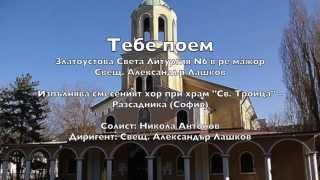 ''Тебе поем'' - Хор при храм ''Св Троица'' - дир. свещ Ал. Лашков