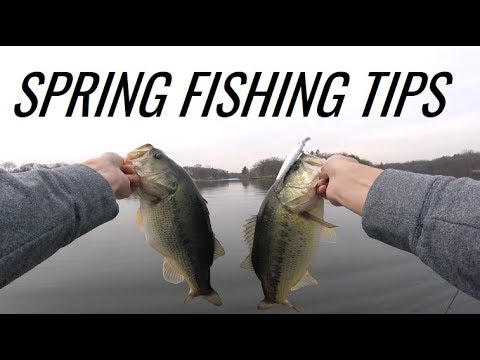 Early Spring Bass Fishing with Jerkbaits - Tips and Tricks