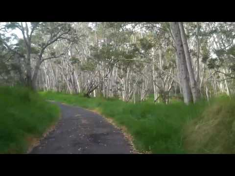 Day Five -Cycling The Big Island of Hawaii -Mauna Loa Road Climb