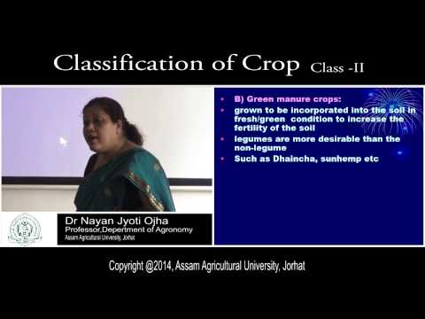 classification of crop