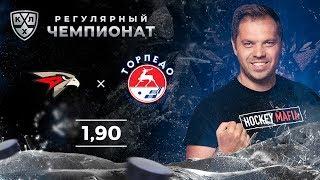 Авангард – Торпедо. Прогноз Лысенкова