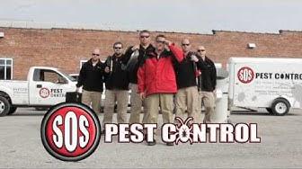 SOS Pest Control - Kansas City's No.1 BEDBUG experts!