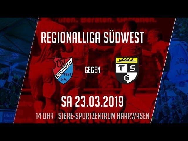 TSV Steinbach Haiger - TSG Balingen 1:1 (Regionalliga Südwest 2018/19)