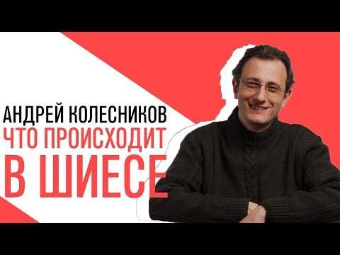 «Потапенко будит!», Андрей Колесников, Обсуждение актуальных политических событий
