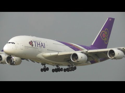 Summer Morning Plane Spotting at London Heathrow Airport, RW09L Arrivals