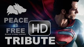 Man Of Steel Tribute
