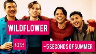 Download Lagu Wildflower 5 Seconds Of Summer MP3