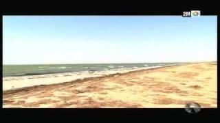 Carnets de Voyages Dakar Fès Express - Le parc national du Banc d'Arguin