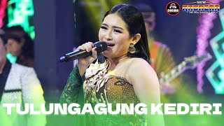 Download lagu Shepin Misa - Tulungagung Kediri