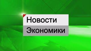 Экономика - Почему может подорожать молочная продукция в Татарстане?