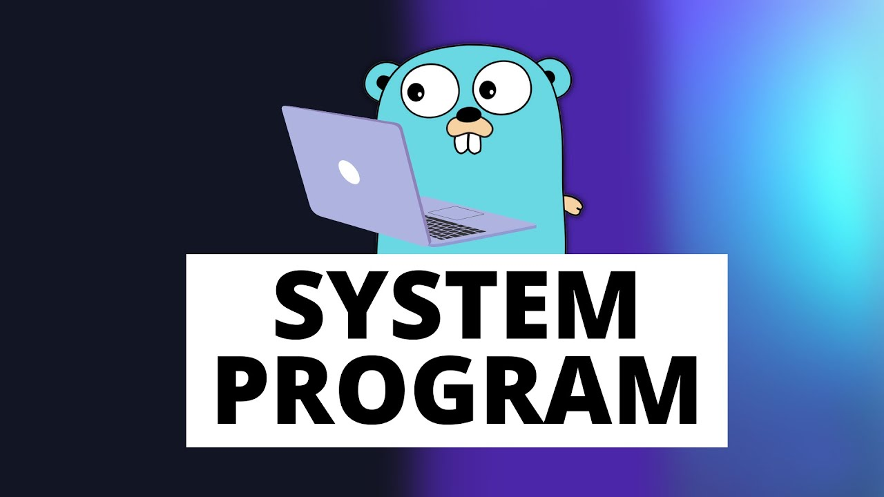 Why is Golang a systems programming language?