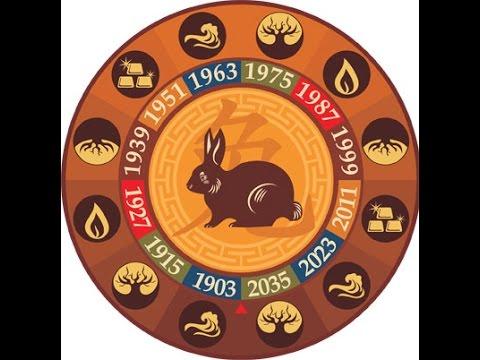 Кролик (кот). Таро прогноз на год Петуха 2017 для родившихся в год Кролика