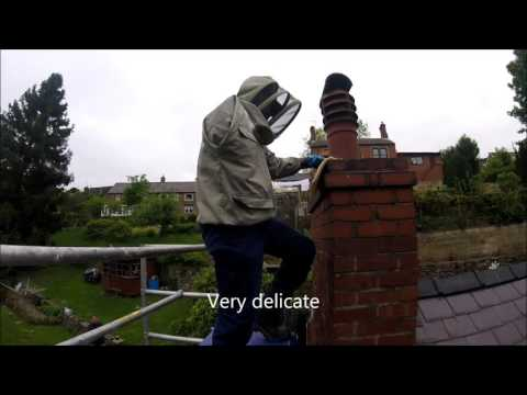 Honey Bee removal from a chimney stack with ABM Pest Control Mansfield, Nottingham