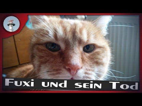 0 - Fuxi und sein Tod