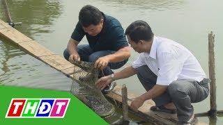 Mô hình nuôi cá lăng nнa của anh nông dân Trương Văn Điền ở huyện Hồng Ngự   THDT