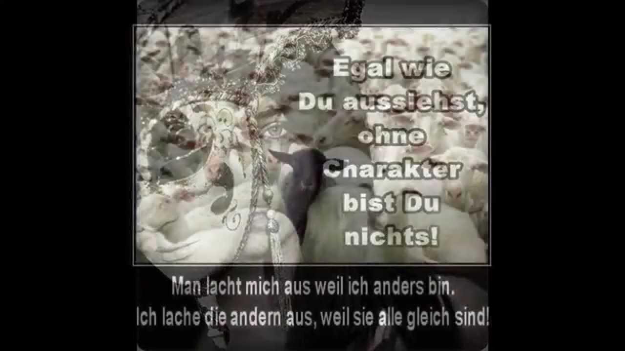 weisheiten, zitate & sprüche 2015 - youtube