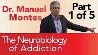Dr. Montes: Neurobiology of Addiction Part 1 of 5 | The Treatment Center