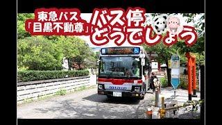 バス停どうでしょう「目黒不動尊(めぐろふどうそん)」東急バス