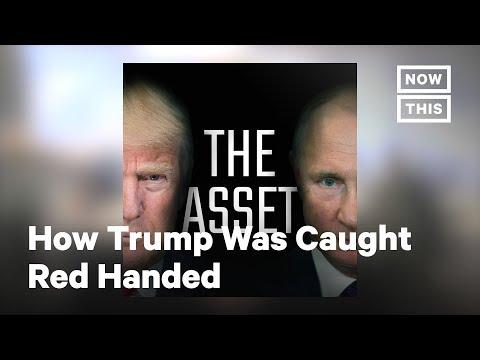 How Trump Got