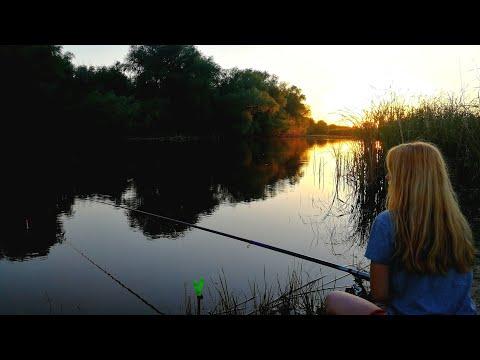 Рыбалка на поплавок ДОБАВИЛ ЭТИХ ОРЕХОВ И У РЫБЫ СРАЗУ НАЧАЛСЯ КЛЕВ