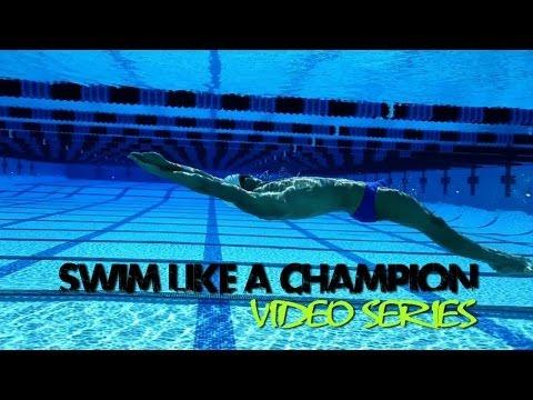 Fitter & Faster Swim Tour Swim Like a Champion DVD Box Set   SwimOutlet.com