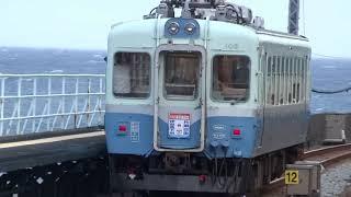 2019年7月7日 伊豆急行クモハ103引退記念特別企画