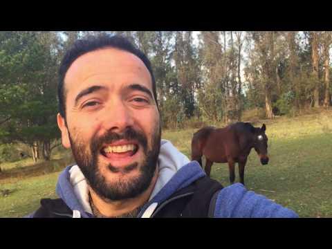 Tutorial KAHOOT español #participaciónactiva from YouTube · Duration:  7 minutes 49 seconds