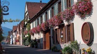 Route des vins d'Alsace, de Kaysersberg à Itterswiller